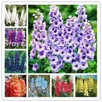 200PCS 분재 식물 씨앗 고깔 무티 색 고깔 Consolida 유기 일본의 아름다운 거대한 룸 꽃 정원 하디 공장 쉬운 성장한다