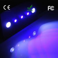 2pcs / lot WIFI 169W Led 수족관 빛 Dimmable COB + Lense 전체 스펙트럼 조명에 대 한 산호초 물고기 해양 탱크 문라이트 램프