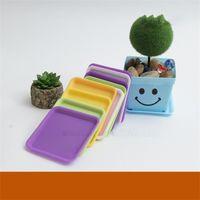 Fleischige Plastik-Blumentöpfe Tablett, die großzügige Waschbecken-Farbquadrat-große Blumentopf 12cm-Direkt-Deal-Sonderangebot 0 3MT A29