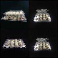 12 ثقوب السمان البيض مربع التعبئة لون شفاف PVC البلاستيكية البيض تخزين حاويات صينية المصنع مباشرة 0 27fl E19
