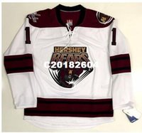 Wholesale ahl jerseys for sale - Real Men real Full embroidery Brayden  Holtby AHL Hershey Bears 2f7a882b425