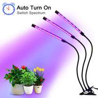 LED Grow Light 12V FitoLampy LED Phyto Lampada Phyto per flower Tenda per piante di ortaggio indoor Fitolamp 60 LED 30W