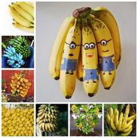 200 Pçs / saco de saco sementes anão banana bonsai árvore fruta tropical Outdoor vaso varanda jardim flor para casa flor panela plantando fácil crescer