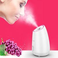 Fruits légumes ménage visage visage vapeur compteur d'eau pulvérisée instrument de beauté spa visage d'humidification blanchissant