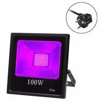 6pc IP66 30w 50w 80w 100w LED UV Partido reflector de la luz de neón Impermeable Negro iluminación ultravioleta LED de luz de inundación con Plug
