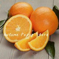 감귤류 분재 만다린 달콤한 즙이 많은 오렌지 분재 식용 과일 분재 나무 식물 건강 식품 홈 정원 쉬운 50 개 PC를 씨앗을 성장