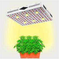 小麦草は軽いCOB紫外線IR 3000Kフルスペクトル温室灯が太陽を置き換えることができ、植物に良い成長環境を与える