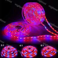 LED تنمو أضواء كامل الطيف قطاع مصباح 5 متر / لفة 60led / m 300 المصابيح 5050 fitolampy للماء الأحمر: الأزرق للاحتباس الحراري مصنع المائية dhl