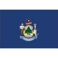 Флаг штата Мэн 3x5 футов баннер 100D 150X90 см полиэстер латунь люверсы высокое качество изготовленный на заказ флаг, Бесплатная доставка