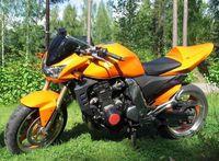Free Custom motorcycle Fairings set for Kawasaki Z1000 03-06 Z1000 2003 2004 2005 2006 road race orange aftermarket fairing bodywork