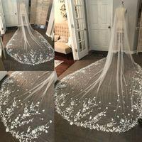 Bröllop slöja applikationer spets med kam brud för tjejer brud katedral lyxig lång kapell längd 300 cm