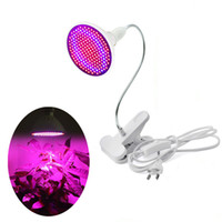 Phyto Lamp Full Spectrum LED Grow Light E27 Plant Lamp With ...