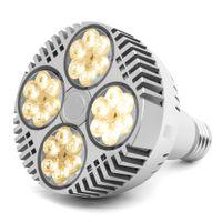 LED는 전구 120W 150W 전체 스펙트럼 COB LED 식물 실내 식물 온실 채식 꽃 꽃에 대한 램프 110V 220V를 성장 성장