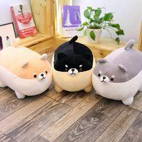 40 / 50см Cute Fat Dog Плюшевые игрушки Фаршированные Мягкая Kawaii корги Chai собака Подушка прекрасный подарок для детей EEA539