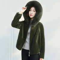 Autumn and Winter New Fur Coat Short Section Slim Imitation ...