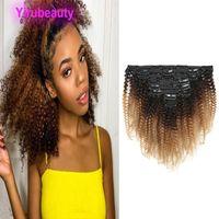 Malese clip dei capelli umani In Afro crespo ricci clip in capelli estensioni 1B / 4/27 Ombre Virgin dei capelli tre toni di colore 12-20inch