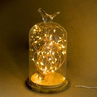 LED Kupferdraht Lichterketten CR2032 Knopfzelle Reis Lichterketten 2M 20LED Lichterkette für Weihnachten Hochzeitsdekoration