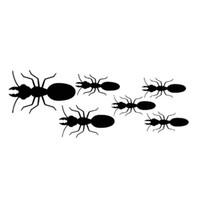 16 * 6cm Ant aile-Cut Vinil Pencere Çıkartması Die / sticker Benzersiz Arka Pencere Araç Plakası Vücut Çıkartmaları