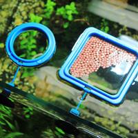 Nicrew Aquarium Futterring-Fisch-Behälter Floating Food Tray Feeder Square Circle Zubehör Wasserpflanze Buoyancy Saugnapf