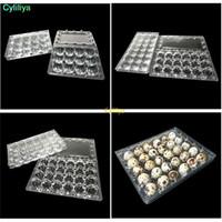 24 Holes Ovos de codorniz Container caixas de plástico transparente ovos Embalagens Caixa de armazenamento Bandeja Retail Packing