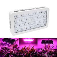 1200W 120LEDS LED 가벼운 이중 칩 성장 램프 전체 스펙트럼 식물 성장 조명 실내 온실 수경법