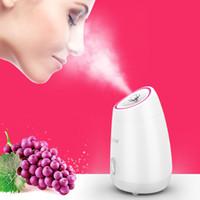 Vegetales de frutas facial vapor de la cara del hogar Spa instrumento de la belleza del aerosol belleza herramienta de humidificación contador del agua de la cara