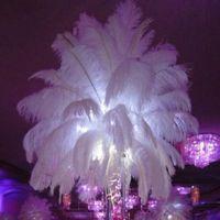Nero struzzo piuma della piuma per il centro di cerimonia nuziale piuma nozze Natale Home Festive Table Decoration Supply Partito DHL