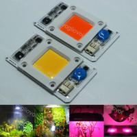 Beads Light 50W Full Spectrum 380-840NM 6500K CON SMART IC AC110 / 220V Accesorios de iluminación para el plan de hidroponía interior Cultivar luces EUB