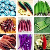 200 pcs sementes Rare vegetais Quiabo Bonsai Verde Saudável Delicioso DIY Início Garden Bonsai plantas orgânicas plantas hortícolas frete grátis