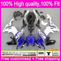 Injectielichaam voor Kawasaki ZX 10 R ZX1000C ZX10R 08 09 10 66HM.12 ZX 10R 1000CC ZX1000 CC ZX-10R 2008 2009 2010 Blue White OEM-Valvormen