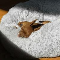 Animaux Macaron lit rond Photograp Lavable Cat Petite maison Donuts coton Tapis Canapé pour Chihuahua Dog Panier Y200330