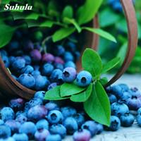 Горячая Распродажа!300 шт Семена голубики фруктовых деревьев, горшечных растений редкие фрукты здоровое растение цветок