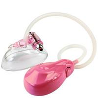 Nova 2017 de buceta Mulheres Bomba rosa Vaginal bico do Vibration Vacuum buceta Clitóris otário Bomba Clit Sex Toys Retail frete grátis MX191217