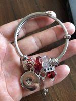 Snap Charm Armbänder Edelstahl Armreif mit Snap-Knopf- und Verschiedene Charms Modeschmuck Armband Bestes Geschenk für Frauen Mädchen