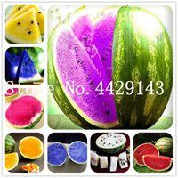 50 PC 화려한 수박 분재 식물 씨앗 씨앗 매우 쉽게 행복한 농장에서 즙이 많은 식물 맛있는 과일 씨앗 분재 무료 배송