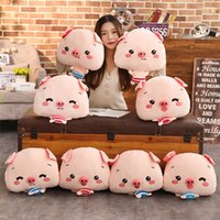 Plush toy expression pig pillow warm hand blanket three- in- o...