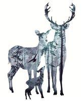 Sfondo Cervide Inverno - vernice dai corredi di numeri per adulti Diy Animali di illustrazioni per Wall Art colorazione dal numero di attingere Tela