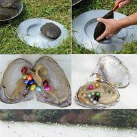 Yuvarlak Oyster Pearl 6-9 mm 20 Karışık Renkli Büyük Tatlısu Doğal İstek İnci Gevşek Boncuk Vakum Paket Takı DIY Doğum Günü Hediyeleri toptan