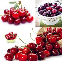 100 PC 씨앗 무지개 색상 벚꽃 벨 무 분재 100 % 진짜 맛있는 야채 화분 집 정원 식물 성장하기 쉬운