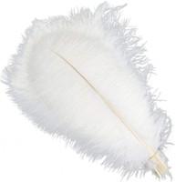 11 цветов на много 10-12 дюймов Белое перо страуса Plume Craft Supplies Свадеб Таблица Centerpieces украшения Бесплатная доставка