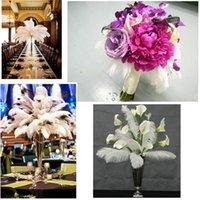 200 Adet YENİ Başına lot 10-12 inç Beyaz Devekuşu Tüy Plume Craft Düğün Masa Centerpieces Dekorasyon Ücretsiz Kargo Malzemeleri