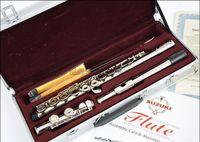 Gümüş kaplama flüt Yüksek kaliteli flüt SUZUKI 16 delik C silvered kapalı delik flüt enstrüman / paket Ücretsiz gönderi