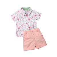 Emmababy 2019 الصيف طفل أزياء الأطفال طفل رضيع الملابس فلامنغو القمم قميص + سروال الرجل المحترم شاطئ تتسابق الملابس 2PCS مجموعة