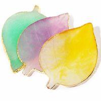 Diseño de la hoja Práctica pantalla de cristal uñas paleta natural de resina decoración de uñas Herramientas