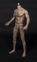 1/6 Wolverine muscolare spalla larga Strong Durable Body Man Doll