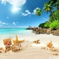 Wholesale Children Beach Paintings - 5X7FT wish bottle sand beach photography backdrops for photos muslin digital photography background vinyl studio backdrop computer printed