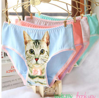 Wholesale Cheap Lingerie Wholesale Free Shipping - Cheap!!! Women Lady Sexy Lingerie Seamless Briefs Pussycat Panties Anti Emptied Cat Printing Underwear DHL Free shipping