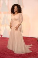 oscar için gece elbiseleri toptan satış-2020 allık pembe Oprah Winfrey Oscar Ünlü Elbiseleri artı boyutu v boyun uzun kollu Sweep Tren Draped abiye ile kılıf tül