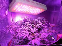 Wholesale Hydroponic Indoor Growing W LED Grow Light with band Full Spectrum for Plants Growth and Blooming