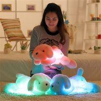Wholesale Luminous Pillow Teddy - New Arrival LED Shining Nightlight Lovely Dog Glow Plush Toy Luminous Pillow Soft Quality Stuffed Glowing Teddy Cushion Christmas Gift Toys